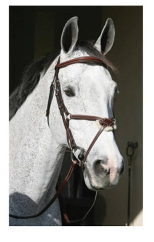 HDR Pro Plain Raised Figure 8 Bridle w/ Rubber Reins