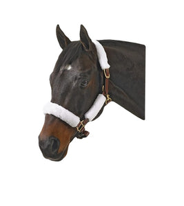 Jack's 4 Piece Halter Fleece Set