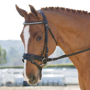 "Black Oak ""Larkspur"" Bridle w/ Crank & Flash"