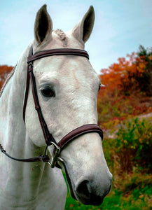 Red Barn Spirit Bridle