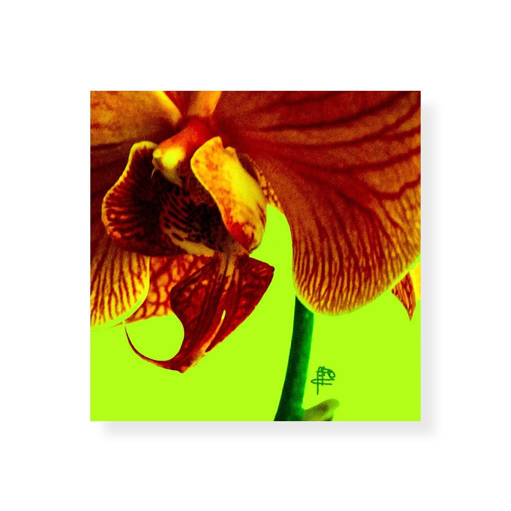 Orchid Lime Hardboard Coaster