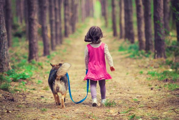 Dogs and children: how to help them become best friends
