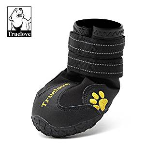 Doggy Boots