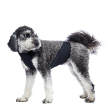 "Big and Small Dog Weatherproof Dog Belly Bib & Leggings - Click on ""SHOP"" for details"
