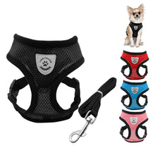 Breathable Harness and Leash Set