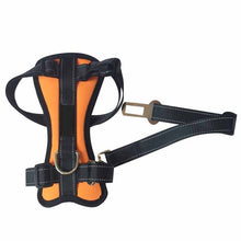 Dog  Harness and Seat Belt attachment