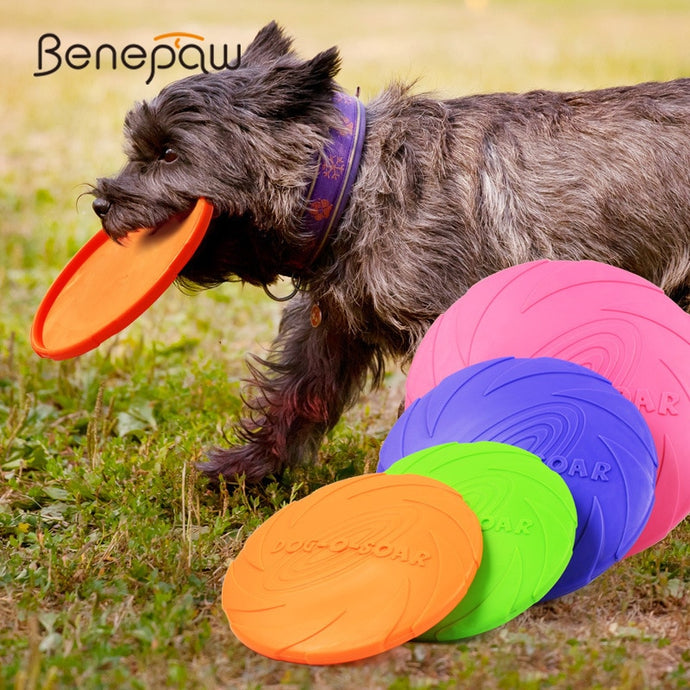 Rubber Dog Frisbee