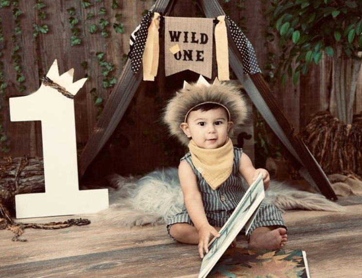 "How to Plan a ""Wild One"" Themed First Birthday Party"