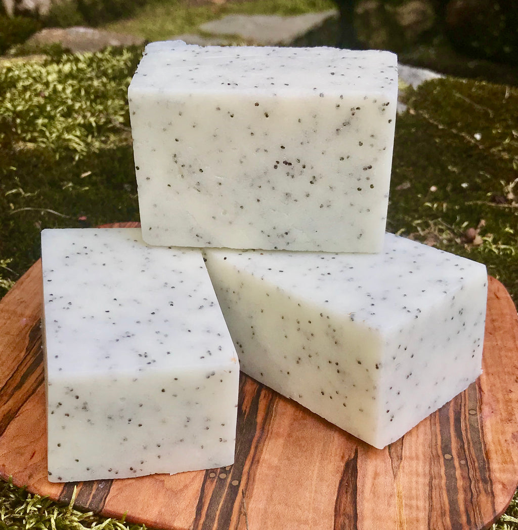 White Tea and Ginger Solid Sugar Bar Scrub - All Natural Handmade with Avocado Oil