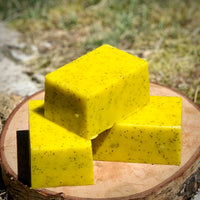 White Tea and Ginger Solid Sugar Bar Scrub - All Natural Handmade Vegan with Avocado Oil