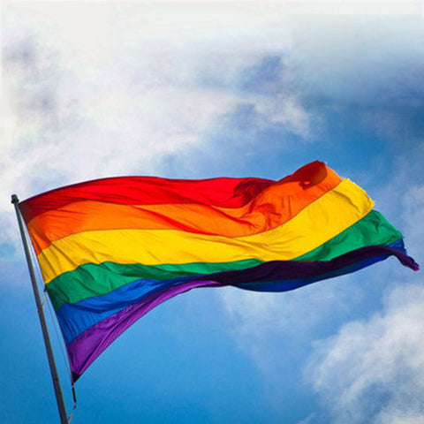 Gay Friendly Regenbogen Flagge Banner Pro Lesben Gay Pride LGBT Flagge Polyester Bunte Regenbogen Flagge für Gay Right Parade 90x150cm