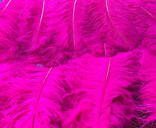 1st Quality XL Individual Female Ostrich Feathers