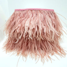 Fancy Ostrich Feather Bag