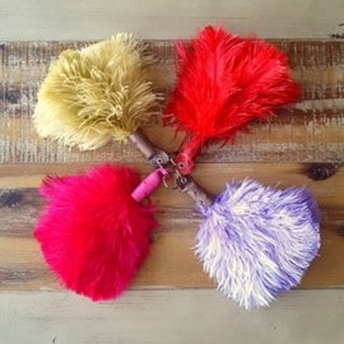 Ostrich Feather Keyring Handbag Charm With Leather Top