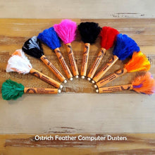 Ostrich Feather Computer Duster