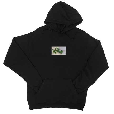 College hoodie,  with small frame of grenn plant center chest. Price 28.99, Sizes- xs, sm, med, lrg, xL, 2xL, 3xL and  13Colors: Black Ash, Airforce Blue, Brick Red, Bottle Green, Burgundy Charcoal, Gold Navy, Purple, Royal Blue, Kelly Green and Orange