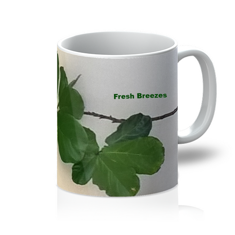Our top quality sublimation blank 11oz mugs are dishwasher safe and are pure white Orca coated. A fantastic personalised product for your store