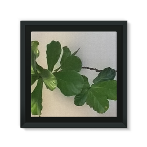 A beautiful high quality framed Eco-canvas that will look amazing on any wall.