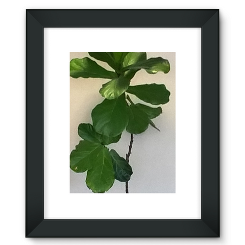 A beautiful high quality framed fine greenery art print that will look amazing on any wall.
