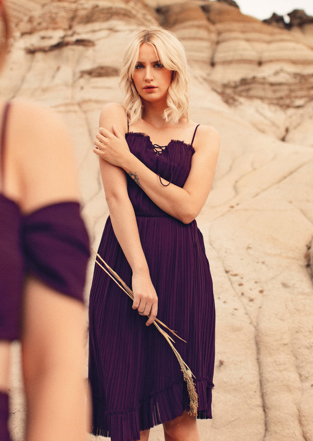 Diana Pleated Chiffon Midi Dress