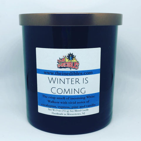 Winter is Coming 9 oz candle