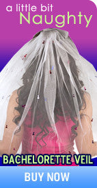 Naughty Bachelorette Party Penis Veil