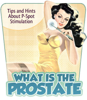 What Is the Prostate and How Do I Find It?