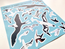 Load image into Gallery viewer, Seabird Sticker Sheet