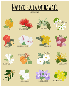 Native Flora of Hawai`i Poster