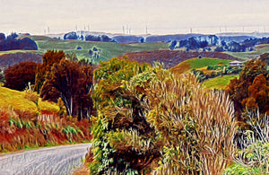 Te Hutewai Road Art Print