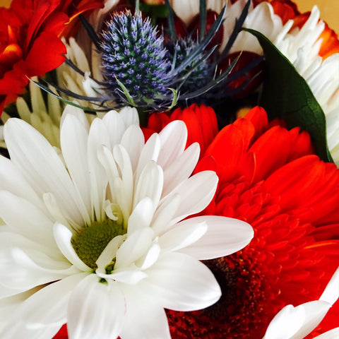Red White & Blue Flowers