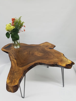 Natural Edge English Walnut Coffee Table- Tree Slice Coffee Table- Unique Coffee Table- Dark Natural Wood- Steel Legs- Industrial- Rustic