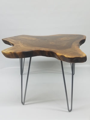 Natural Tree Slice Coffee Table- End Table- Side Table- Live Edge- Natural Edges- English Walnut- Modern- Industrial- Mid Century- Rustic