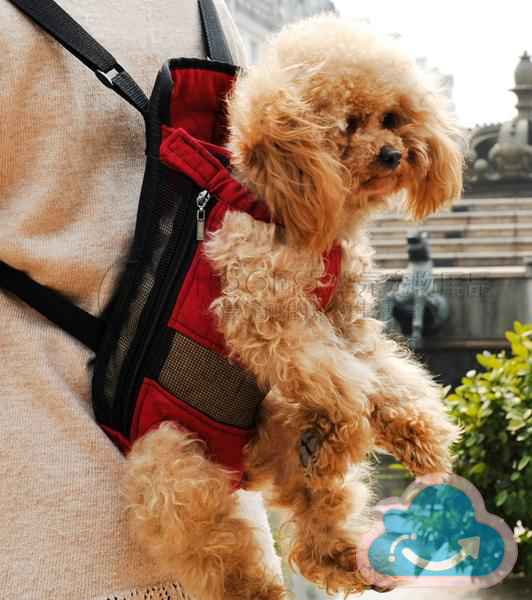 Outdoor Dog Carrier - Monag Store