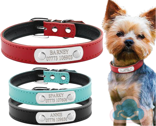 Personalized Dog Collar - Monag Store