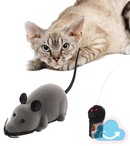 Remote Control Mouse Cat Toy - Monag Store