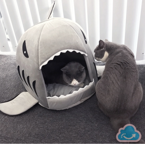 Shark Pet House - Monag Store