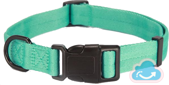 Small Pet Collar - Monag Store