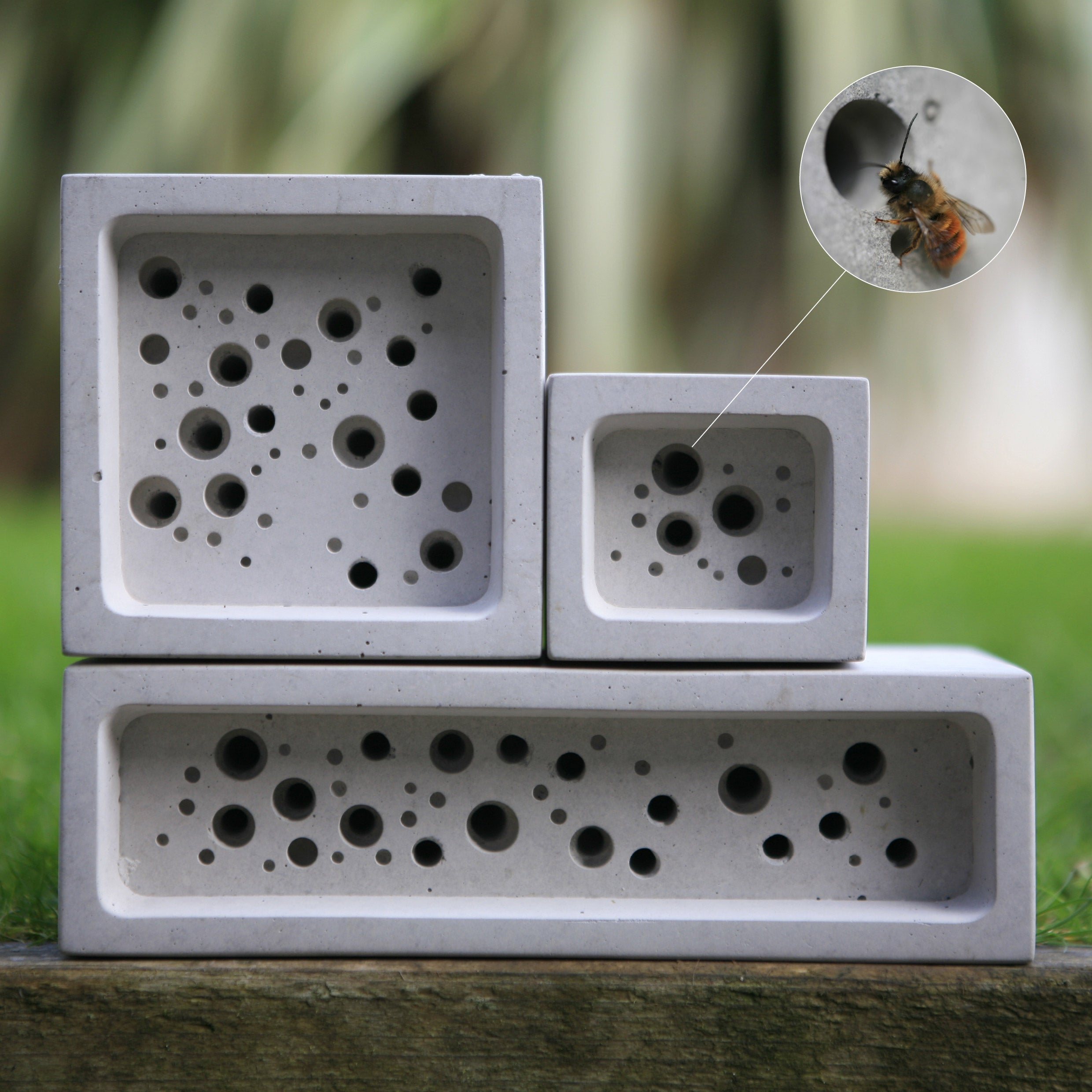 Group of concrete bee hotels with close up cutaway showing a bee entering a cell