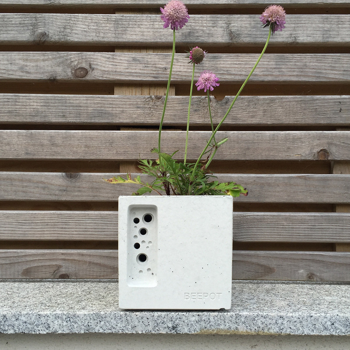 Concrete Bee Pot planted with pink flowers