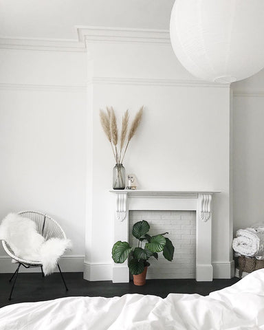 White fireplace wall with plants