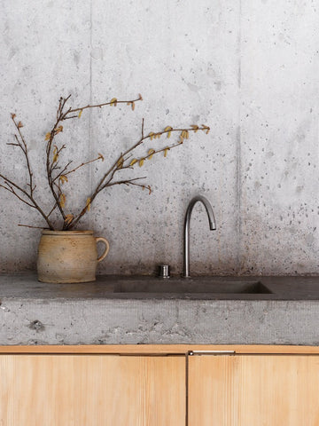 Concrete wall and kitchen counter with sink and potted twigs