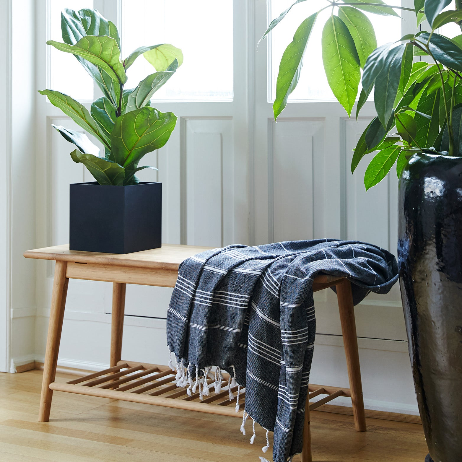 Hallway bench with blanket and large potted plant