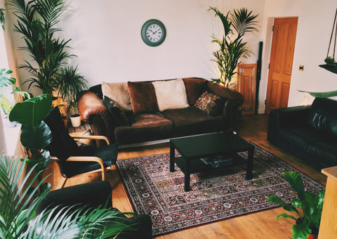 Living room with brown sofa and lots of plants