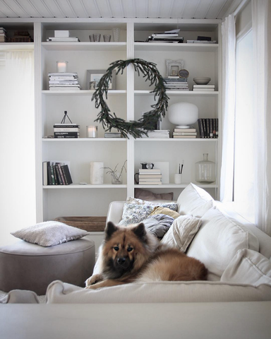 Lounge scene with sofa, book case, minimal Christmas wreath and dog