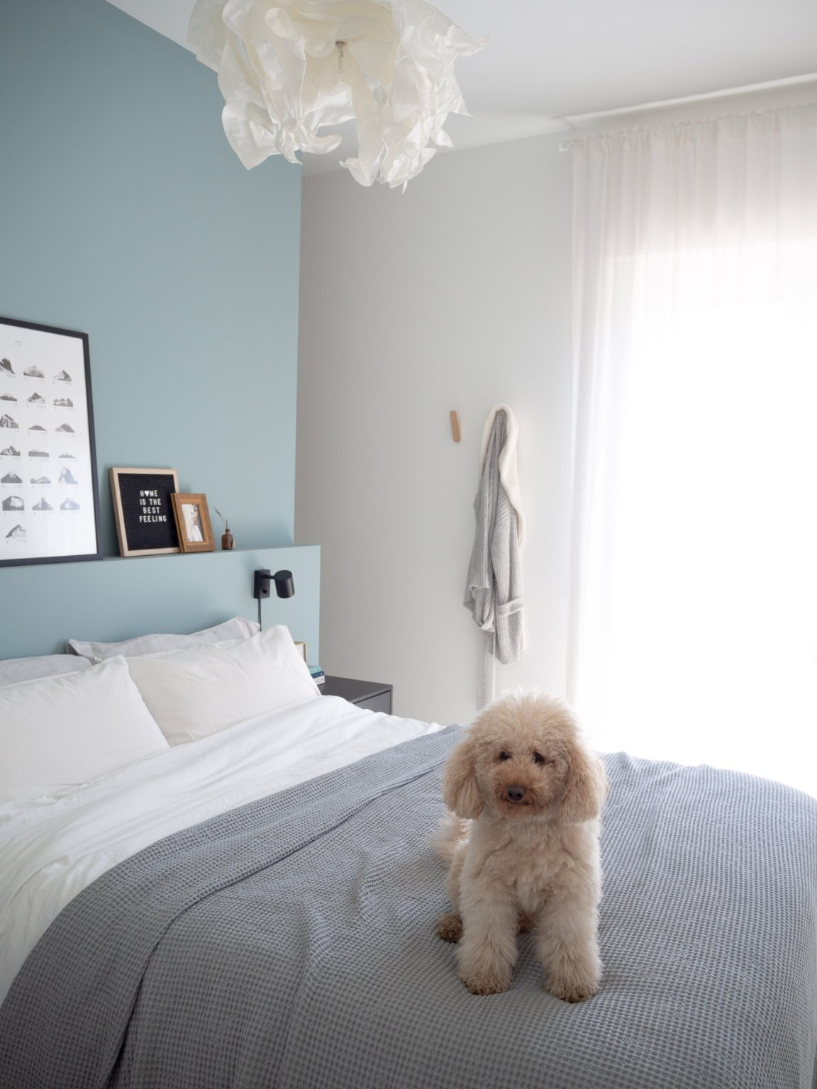 Minimal blue and grey bedroom with fluffy white dog on bed