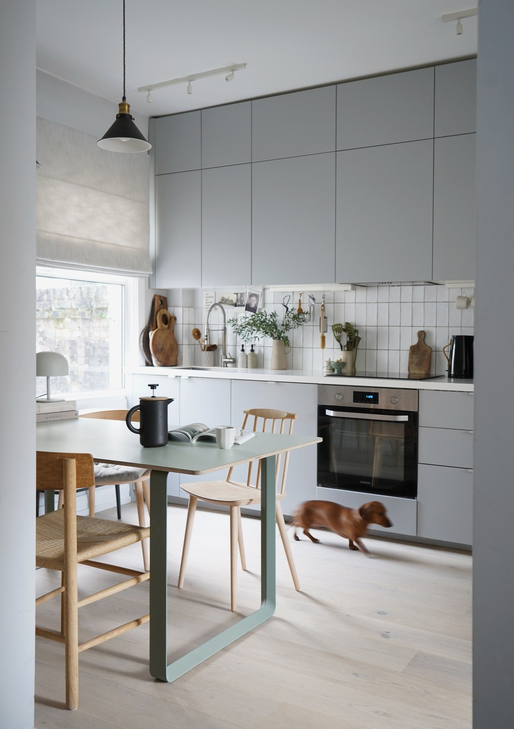 Modern grey kitchen with pale wood floor and mismatched dining chairs. Dachshund dog running across floor