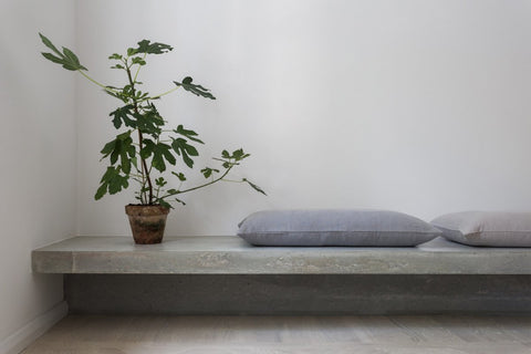 Floating concrete bench with potted plant and grey cushions