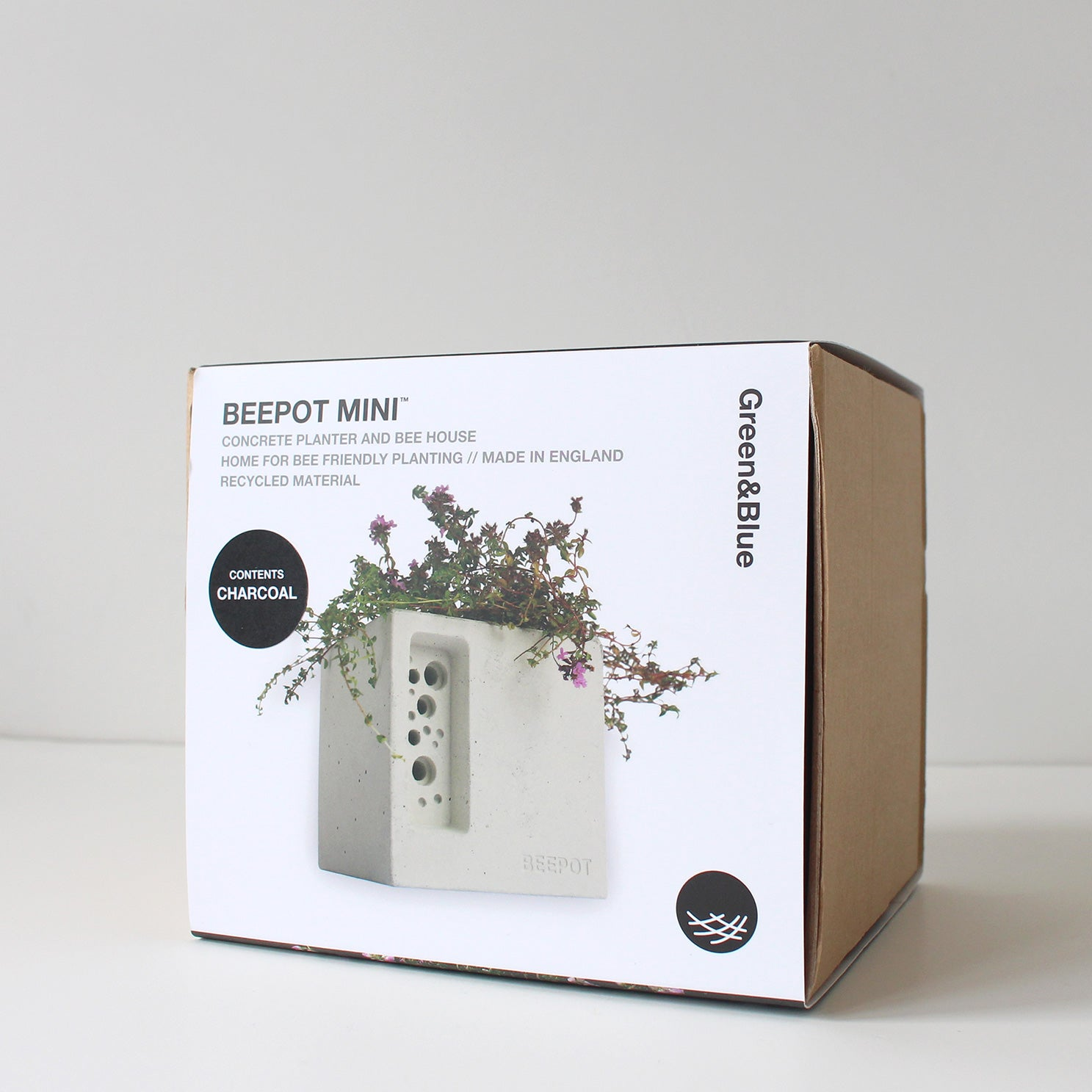 Concrete bee planter packaging