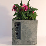 Bee Pot | Concrete Planter & Bee Hotel | Grey